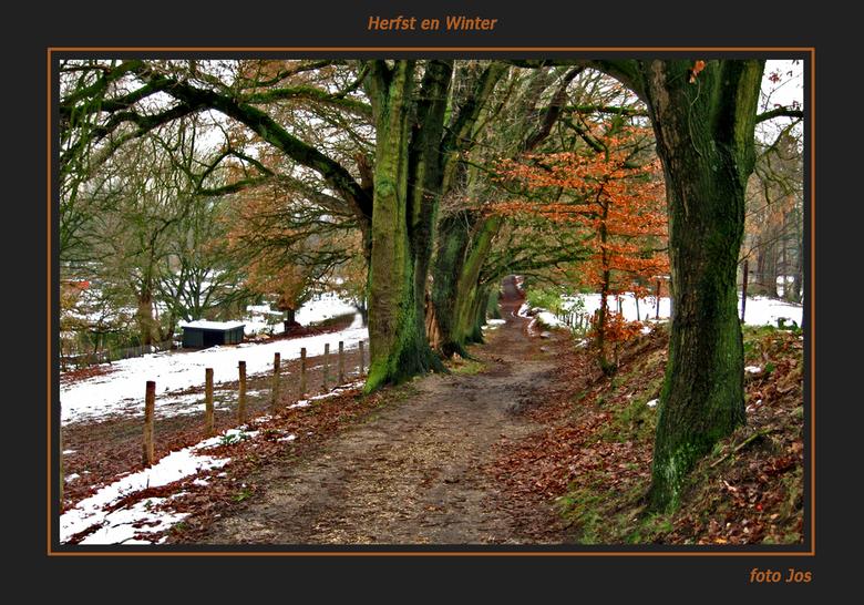 Winter en Herfst - Woensdag 26-11-2008. 'n indruk van park Klarenbeek in Arnhem. 'n mooi heuvelachtig stukje natuur vlak bij de stad. Ieder