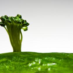 Combi Broccolli en Komkommer