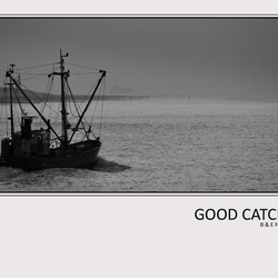 Good Catch...