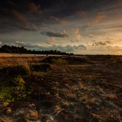 loonse en drunense duinen zonsondergang