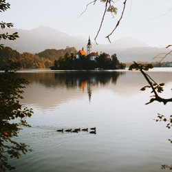 Magical morning on Lake Bled