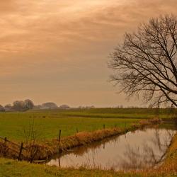 Landschap nabij Hasselt
