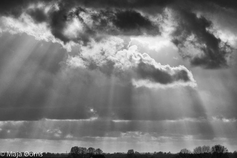 Sunrays.... - Vanavond dit plaatje nog mogen maken....nabewerking in silverefex...wilde het geheel een wat dramatische look geven...