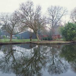 Bomen weerspiegelen in het water.(2)