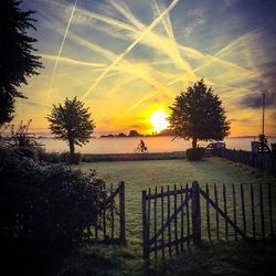Haarlems ochtendgloren