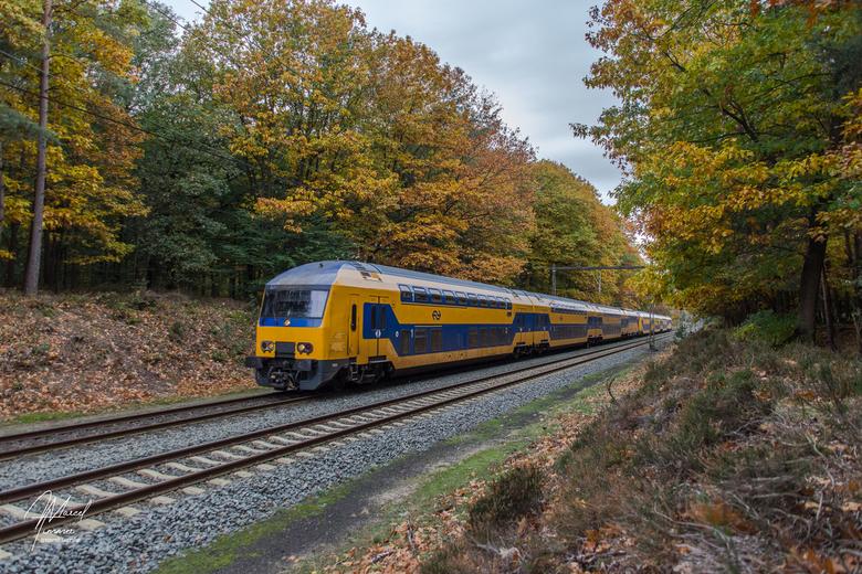 _NS NID 7505, Hoog Buurlo - In een herfstachtige omgeving op de Veluwe bij Hoog Buurlo is NS NID 7505 dubbeldekker onderweg als Intercity naar Ensched