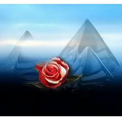 Collage Roos met pyramides