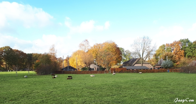 Landschap - Deze  foto mobil genomen buurschap soppe in Wezep