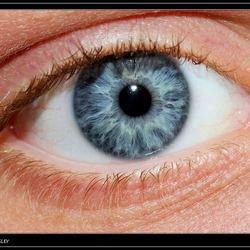 Het oog van Wesley.