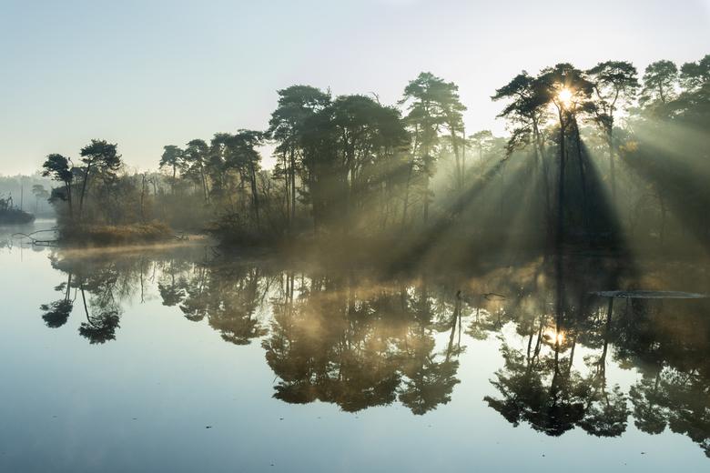 herfst ochtend - vanmorgen weer eens even gaan genieten bij het voorste goorven in Oisterwijk