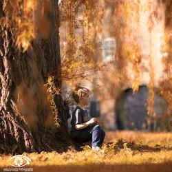 Under the queens tree