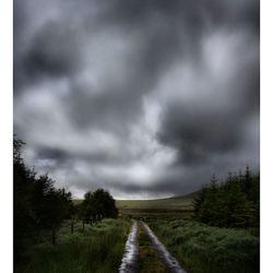 Dingle Way Ierland