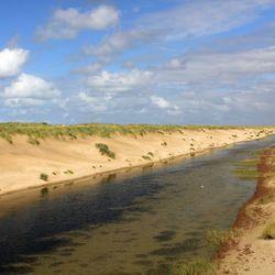 De nieuwe Hondsbossche duinen bij Petten
