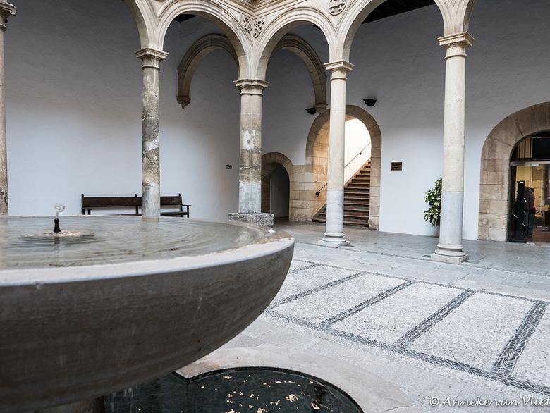 Universitas Granatensis - De Universiteit van Granada is een openbare universiteit gevestigd in de stad van Granada, en opgericht in 1531 door keizer