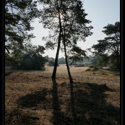 Korte Duinen Soest