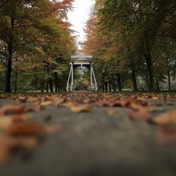 Herfst op landgoed