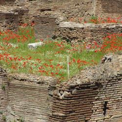 Gladiatorenschool