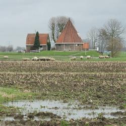 polderlandschap