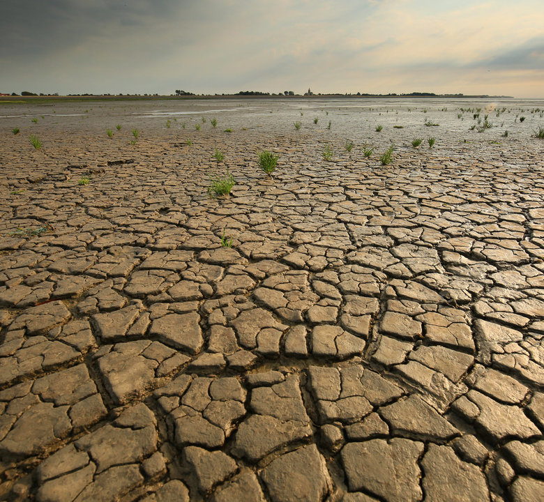 Den Oever - een droge hete zomer.....