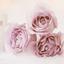 Winter rozen