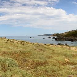Corsica -2