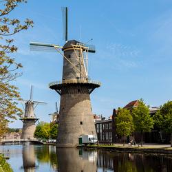 Molen de Vrijheid in Schiedam