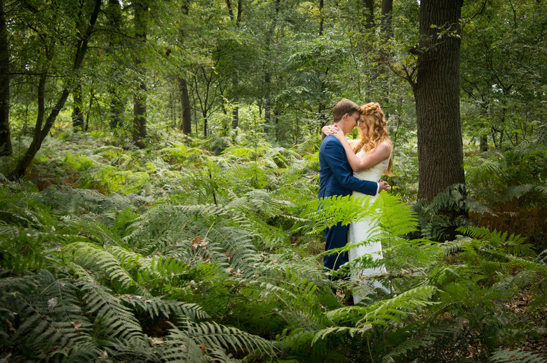 Forest love -