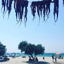 De Griekse waslijn