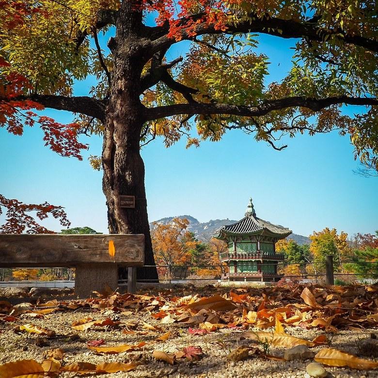 Gyeongbokgung palace in Seoul - Dit onderdeel van het paleis is gefotografeerd van onder het tijdelijk hek wat pas is geplaatst. Er is een renovatie a