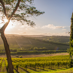 Toscaans uitzicht