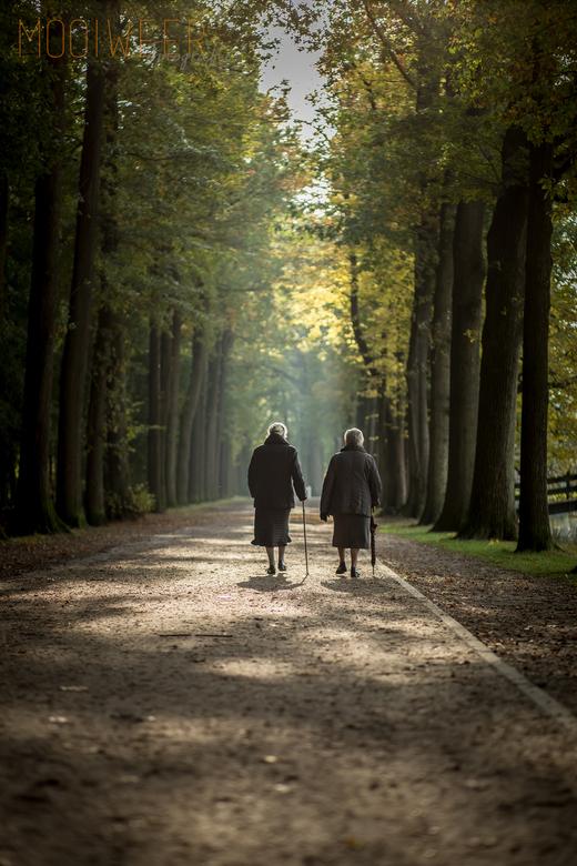 IMG_3365 - Afgelopen zaterdagmiddag had ik een fotoshoot in het Schafelaarse bos in Barneveld. Op de terug weg naar de auto zag ik deze dames lopen, u