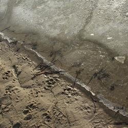 bevroren strand