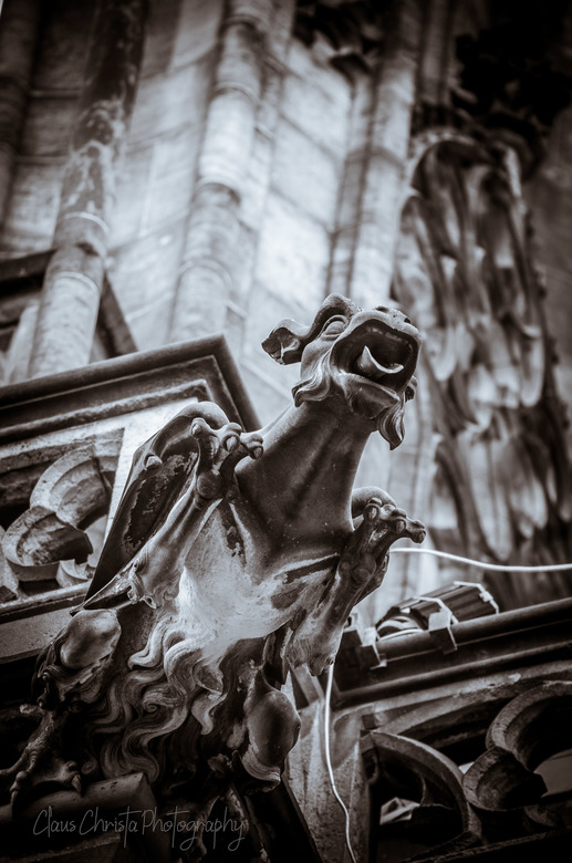 Gothic dragon -