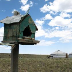 mongools vogelhuisje