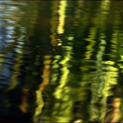 Lichtspel in het water