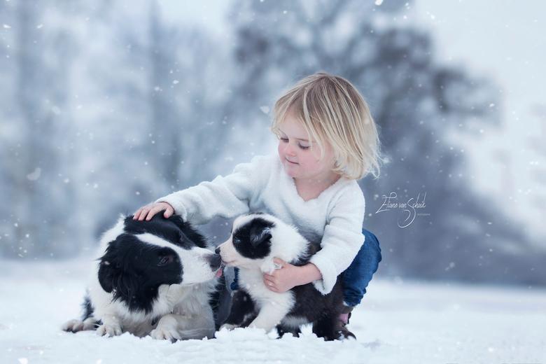 SNEEUW puppy liefde