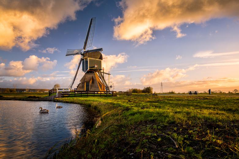 Hollands Licht v2
