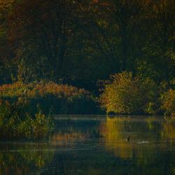 SKFotografie-Herfst ochtend