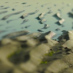 Sand and sea......