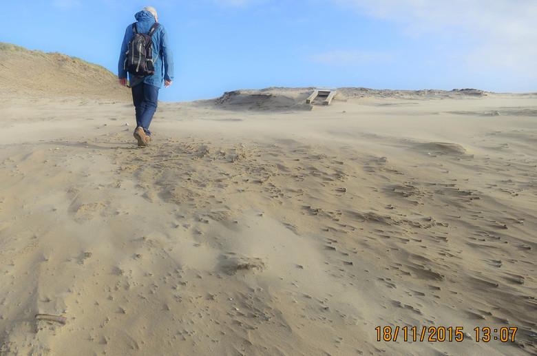 Willem de strandjutter - Willem de strandjutter