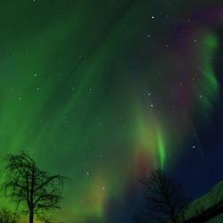 Aurora Borealis in Nikkaluokta.jpg