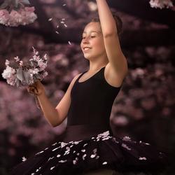 onze ballerina