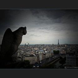 Parijs N Dame 13/13