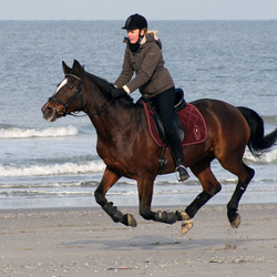Horse riding on the beach 3