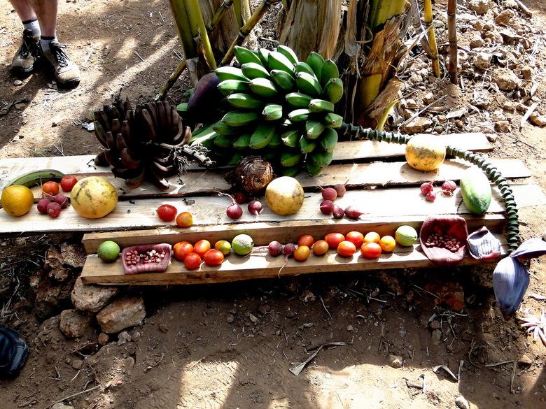 Cuba - Kleurrijk voedsel op Cuba