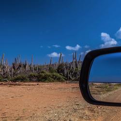 Bonaire in de spiegel