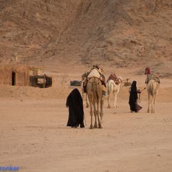 dessert bedouine