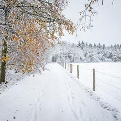 winterslandschap