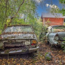Abandoned Junkyard