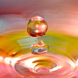 Splash of Joy